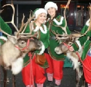 Reindeer Hire Display Team