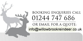 Contact Willow Brook Reindeer Hire 01244 747686