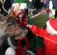 Reindeer hire for school visits in Manchester, Liverpool, Cheshire and North Wales